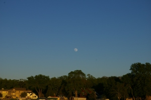 cool and breezy night moon