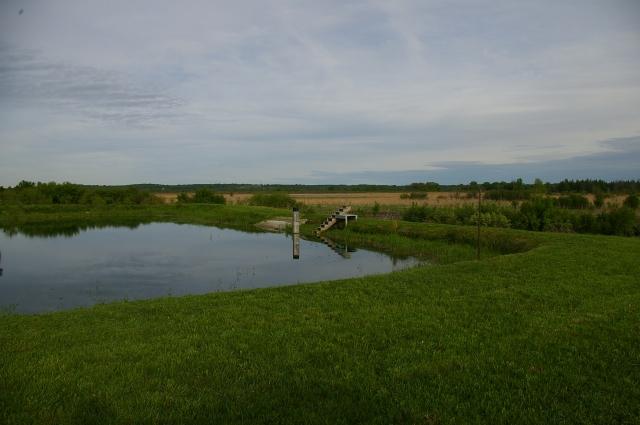 Southwest corner of pond